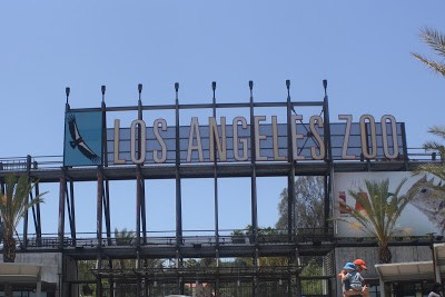 Fun things to do in LA with Kids: Visit the LA Zoo