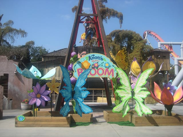Knott's Berry Bloom in Full Swing this Spring