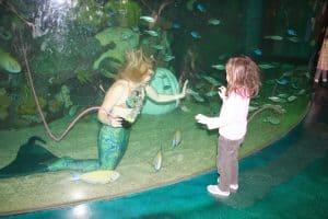 Free Kids Attraction in Vegas: Mermaids' Swimming & Stingray Feedings