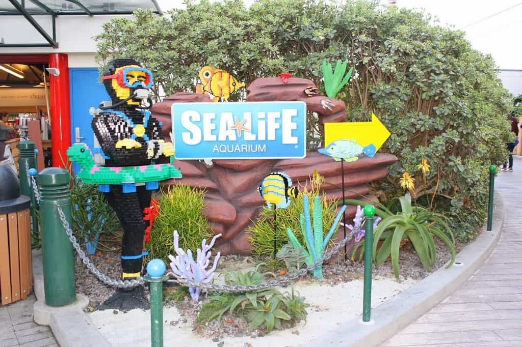 Our Visit To Sea Life Aquarium In Carlsbad Any Tots