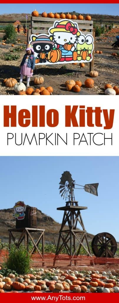 hello kitty pumpkin patch