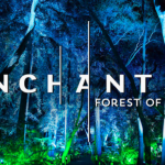 Descanso Gardens Enchanted Forest of Light Discount COMP – $26
