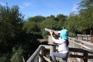 Tips for Visiting San Diego Safari Park