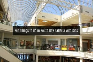 Fun Things to do in South Bay Galleria with Kids