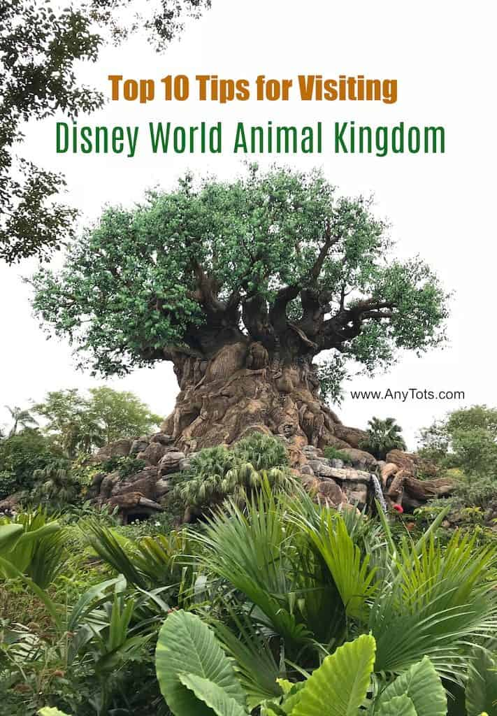 Top 10 Tips for Visiting Disney World Animal Kingdom