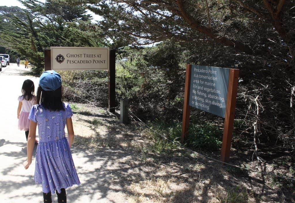 17 Mile Drive Attractions