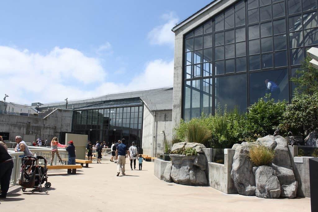 Monterey Bay Aquarium Discount Tickets + Tips for Visiting ...