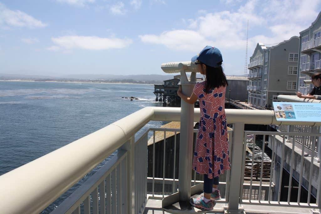 Monterey Bay Aquarium Discount Tickets + Tips for Visiting