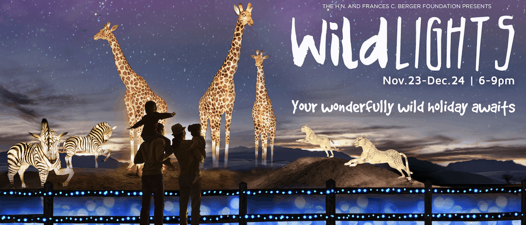The Living Desert Zoo Wildlights Discount Tickets