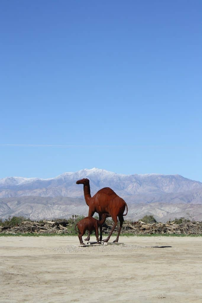 Borrego Springs Nursing Camel Sculpture