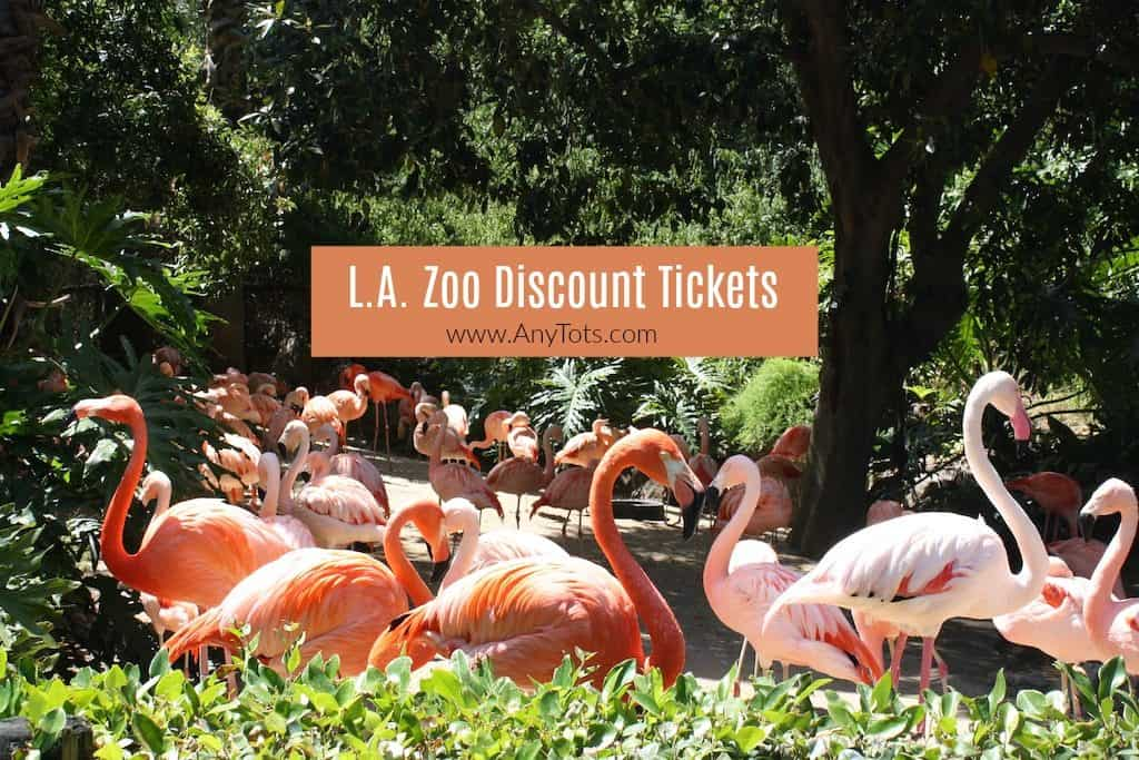 Discount LA Zoo Tickets