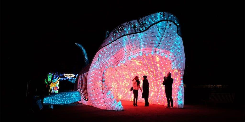 Moonlight Forest Lantern Art Festival